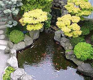 Jasa Desain Taman on Jual Tanaman Hias Dan Desain Landscape  Perawatan Taman Dan Service